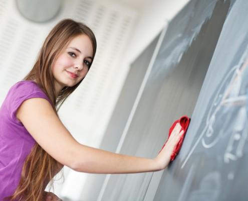 SAT Math Section Text Exam Mathematics