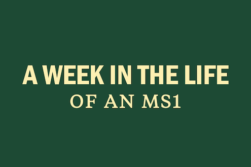 a-week-in-the-life-ms1