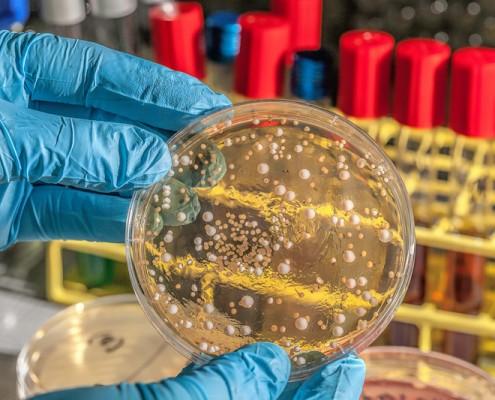 MCAT Practice Questions: Biology