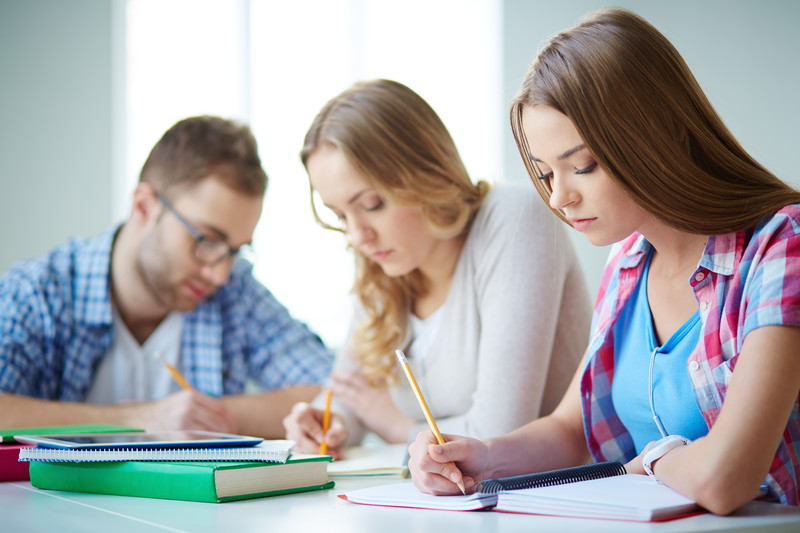 examples of apa style essay papers