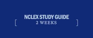 2-week-study-guide-nclex