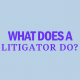 what-does-a-litigator-do