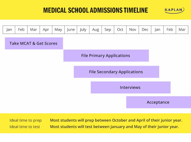 medical-school-application-timeline