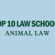 animal-law-top-10-law-schools-rankings