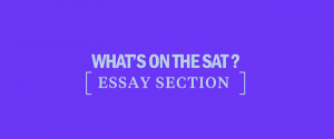 sat-essay-section-test