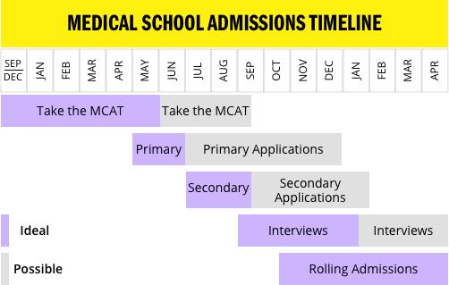 medical-school-admissions-timeline (1)